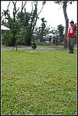 三峽皇后森林:2007.5.10三峽 121