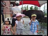 宜蘭冬山厝(傳統藝術中心):20090704宜蘭傳藝中心 003.jpg