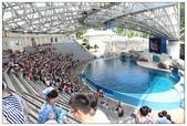 2011海洋公園-海豚秀:IMG_28262011.jpg