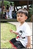 三峽皇后森林:2007.5.10三峽 045