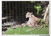 20151205 動物園:2015_1205_0039_yuan.JPG