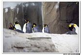 20151205 動物園:2015_1205_0029_yuan.JPG