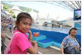 2011海洋公園-海豚秀:IMG_28322011.jpg