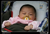 我家寶貝:IMG_0132