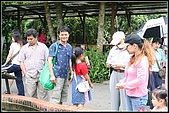 三峽皇后森林:2007.5.10三峽 001