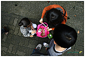 年初一(又見動物園)>,>:20110203066.jpg