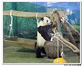 20151205 動物園:2015_1205_0139_yuan.JPG