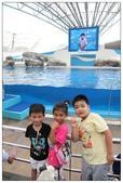 2011海洋公園-海豚秀:IMG_28372011.jpg
