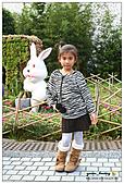 年初一(又見動物園)>,>:20110203154.jpg